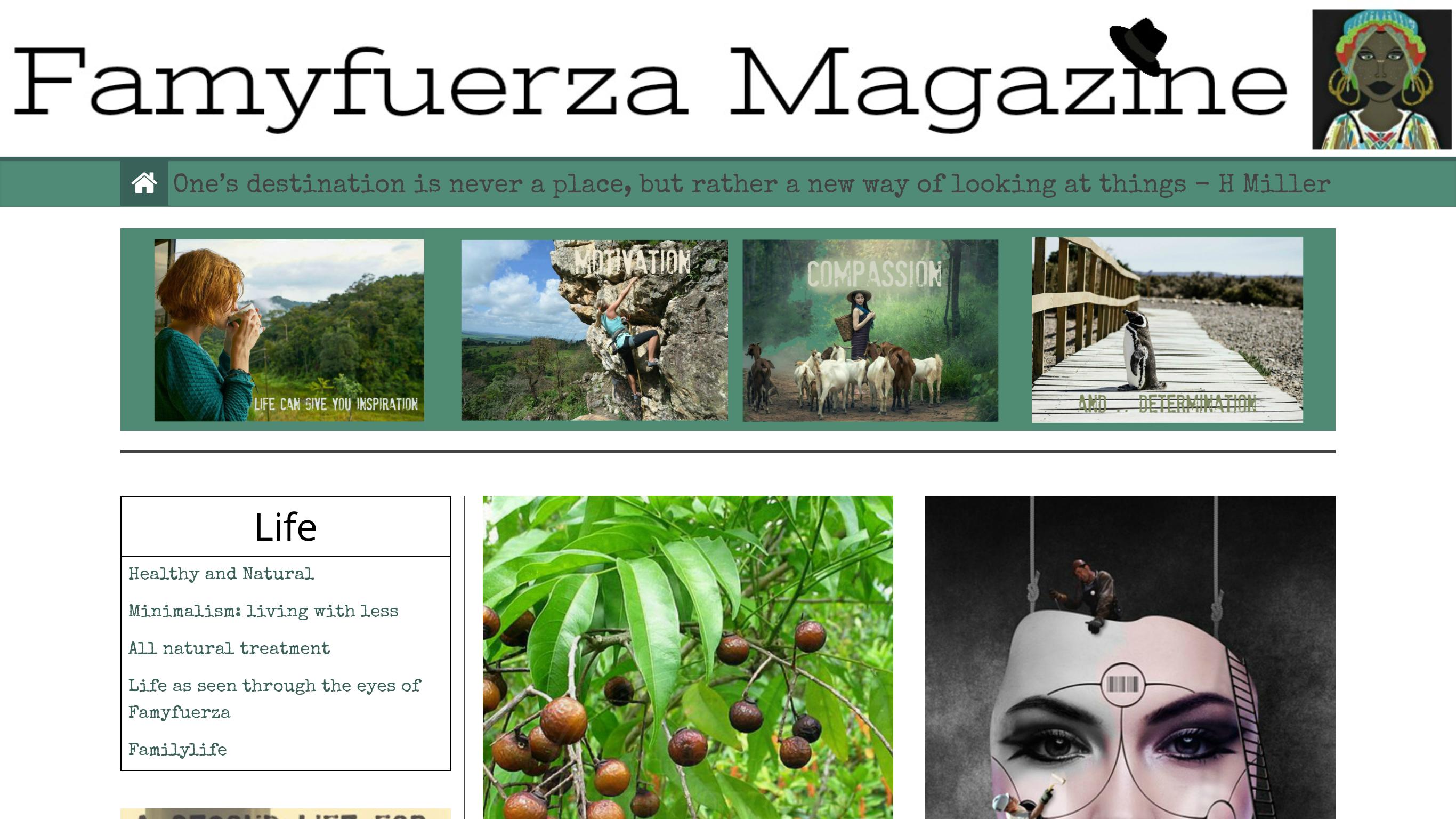 Famyfuerza Magazine